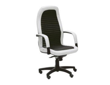 Fotolii ergonomice pentru birouri